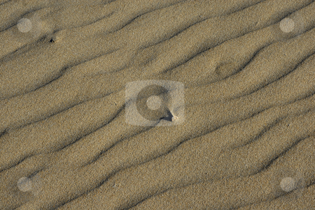 Desert stock photo, Desert detail with ripples in the sands by Rui Vale de Sousa