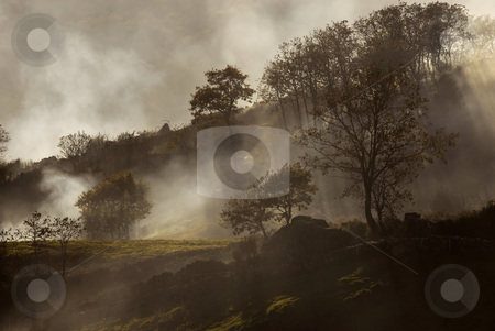 Fog stock photo, Fog or smoke in the portuguese national park by Rui Vale de Sousa