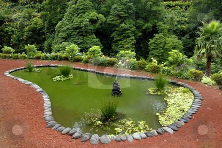 Lake stock photo, Small lake in a garden at azores islands by Rui Vale de Sousa