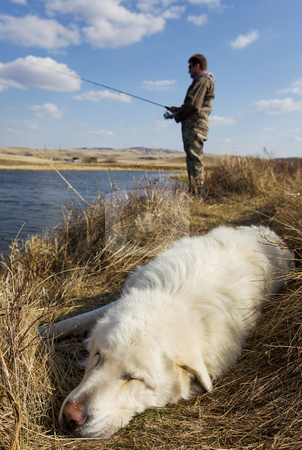 Sleeping dog stock photo, A dog sleeps as his master is fishing focus on the dog by Steve Mcsweeny