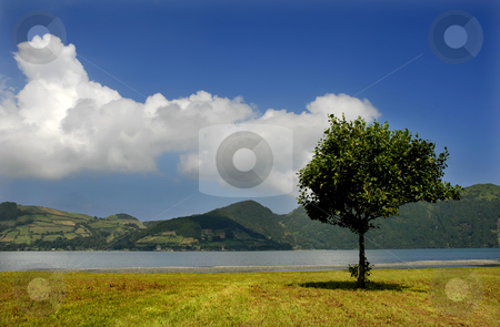 Lake stock photo, Azores seven lake in s miguel island by Rui Vale de Sousa