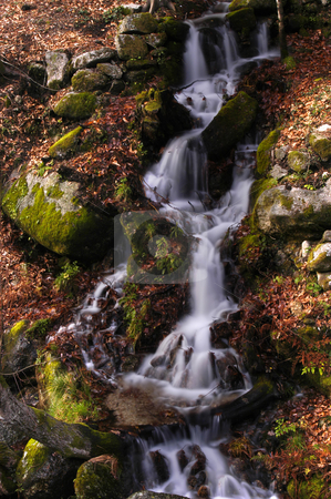Waterfall stock photo, River waterfall by Rui Vale de Sousa