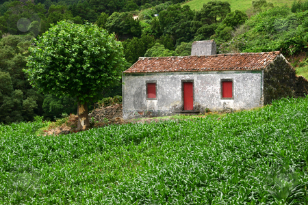 Old house stock photo, Farm old house by Rui Vale de Sousa
