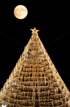 Christmas stock photo, Computer generated christmas tree with a moon in the sky by Rui Vale de Sousa