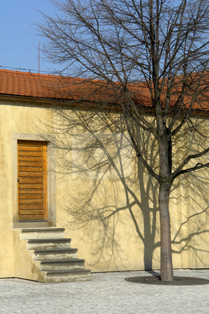 House stock photo, House with a tree in old town of prague by Rui Vale de Sousa