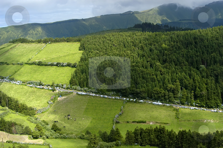 Fields stock photo, Azores green fields at sao miguel island by Rui Vale de Sousa