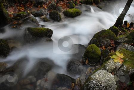 River stock photo, Autumn river detail in the portuguese national park by Rui Vale de Sousa