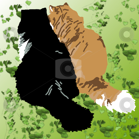 Two Persian Cats stock photo, Two Persian cats conspiring on a green ivy background. by Karen Carter