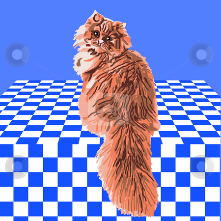 Orange Persian Cat stock photo, Orange Persian cat sitting on a blue and white checkered tablecloth. by Karen Carter