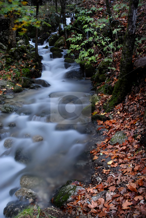 River stock photo, Long exposure in a small river at autumn time by Rui Vale de Sousa
