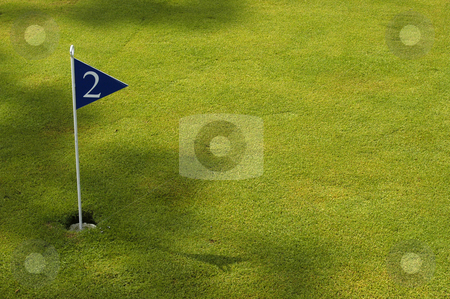 Golf stock photo, Golf field detail by Rui Vale de Sousa
