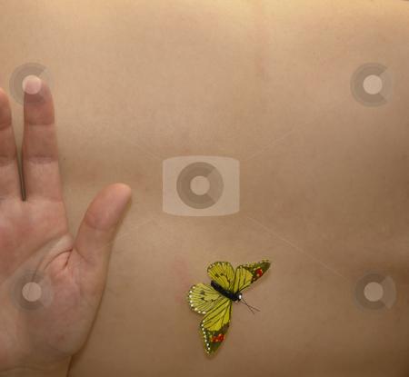 Butterfly stock photo, Butterfly in woman skin by Rui Vale de Sousa