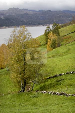Lake stock photo, Autumn lake by Rui Vale de Sousa