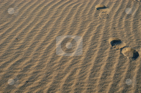 Sand stock photo, Footprints in the sand by Rui Vale de Sousa
