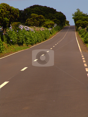 Road stock photo, Road in azores by Rui Vale de Sousa