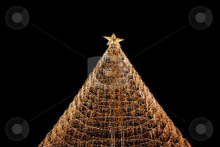 Tree stock photo, Christmas tree lights in the dark night by Rui Vale de Sousa
