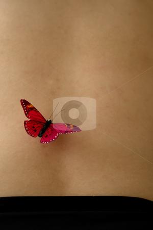 Butterfly stock photo, Butterfly on woman skin by Rui Vale de Sousa