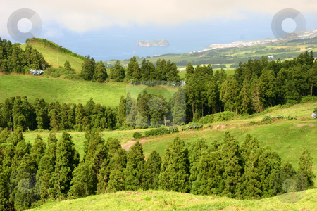 Green stock photo, Azores landscape by Rui Vale de Sousa