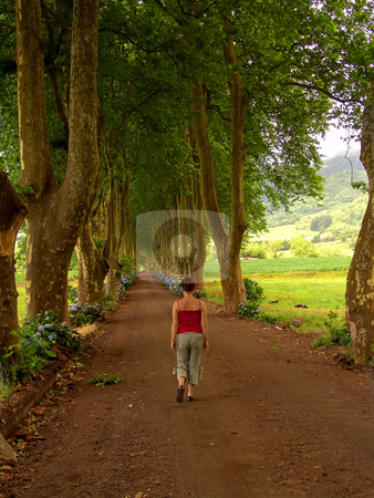 Walking stock photo, Woman in the path with tree on two side in azores by Rui Vale de Sousa