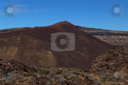 Mountains stock photo, Mountain vegetation by Rui Vale de Sousa