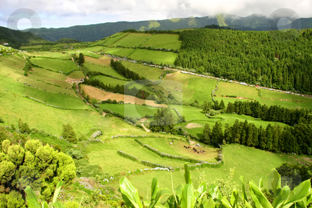 Rural stock photo, Rural landscape in azores island of sao miguel by Rui Vale de Sousa
