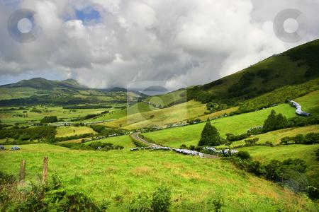 Green stock photo, Azores green landscape by Rui Vale de Sousa