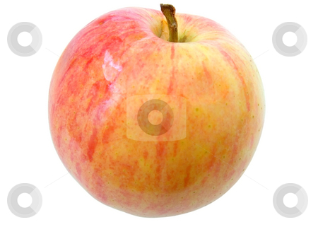 Red apple on white stock photo, Red juicy apple against the white background by Sergej Razvodovskij