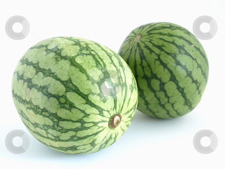 Twin Melons stock photo, Two isolated green watermelons studio isolated against a white background. by Robert Gebbie