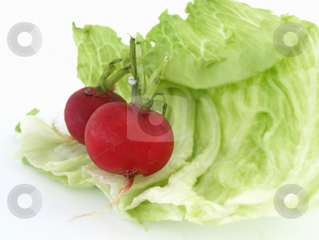 Lettuce Leaf and Radishes stock photo, Two radishes and some lettuce studio isolated on a white background. by Robert Gebbie