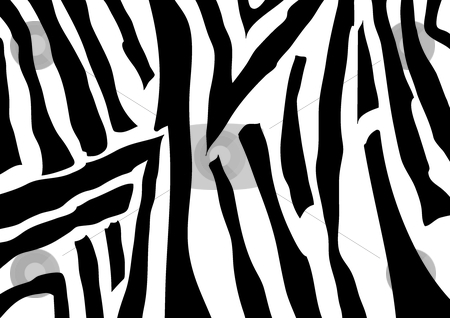 Zebra stock vector clipart, This is a texture of zebra by Veronika Pilatova