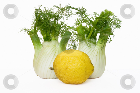 Two fennel and lemon stock photo, Two fresh fennel and lemon isolated on white background by ANTONIO SCARPI