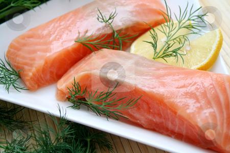 Fresh salmon stock photo, Fresh salmon by Yvonne Bogdanski
