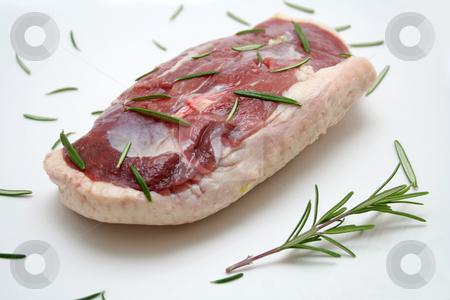 Fresh meat stock photo, Fresh meat of a duck by Yvonne Bogdanski
