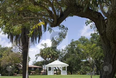 Gazebo in the park stock photo, A gazebo in the park in florida by Robert Cabrera