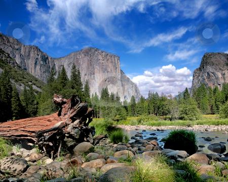 El Capitan View in Yosemite Nation Park stock photo, El Capitan View in Yosemite Nation Park on a Beautiful Sunny Day by Katrina Brown