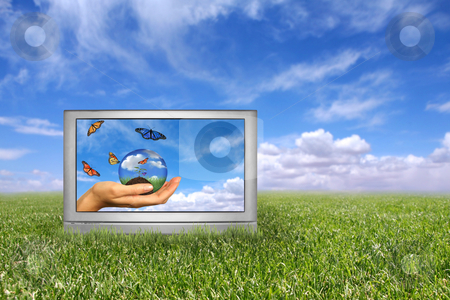 Beautiful Field of Green Grass and Blue Cloudy Sky Earth Concept stock photo, Beautiful Field of Green Grass and Blue Cloudy Sky Earth Concept. Front of Grass is in Focus With Intentional Extreme Depth of Field by Katrina Brown