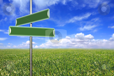 Blank Directional Signs in an Open Field stock photo, Blank Directional Signs in an Open Field of Grass and Sky by Katrina Brown
