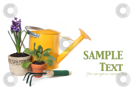 Spring Time Gardening With Watering Can, Trowel and Plantings stock photo, Spring Time Gardening With Watering Can, Trowel and Plantings on White Background With Copyspace for Your Text by Katrina Brown