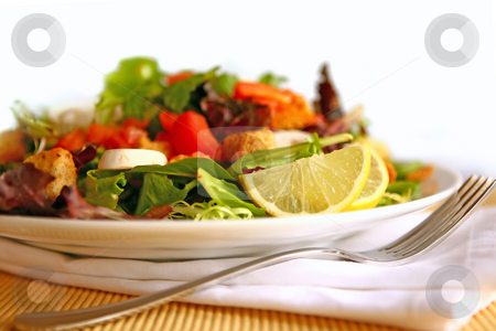 Healthy Delicious Salad on a Plate With High Depth of Field stock photo, Healthy Salad on a Plate With Focus on Lemon by Katrina Brown