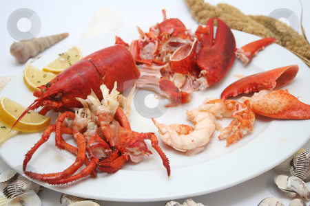 Lobster meal stock photo, Lobster meal by Yvonne Bogdanski
