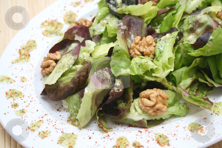 Salad with walnuts stock photo, Salad with walnuts by Yvonne Bogdanski