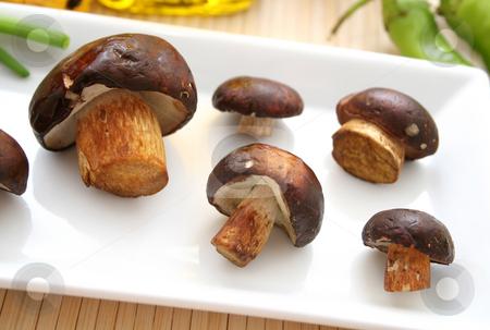 Fresh mushrooms stock photo, Fresh mushrooms by Yvonne Bogdanski