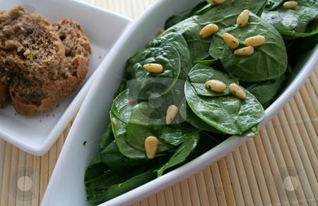 Fresh salad stock photo, Fresh salad of spinach by Yvonne Bogdanski