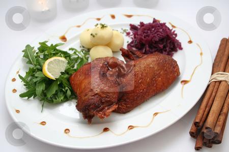 Meat of a duck stock photo, Meat of a duck by Yvonne Bogdanski