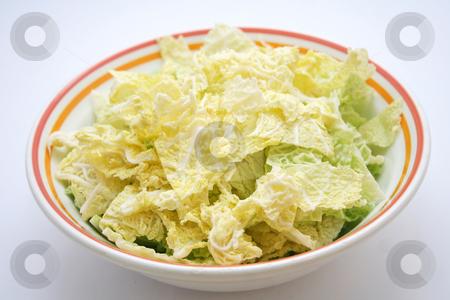 Fresh cabbage stock photo, Fresh cabbage by Yvonne Bogdanski