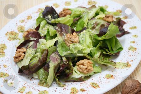 Fresh salad stock photo, Fresh salad with walnuts by Yvonne Bogdanski