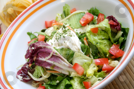 Mixed Salad stock photo, Mixed Salad by Yvonne Bogdanski