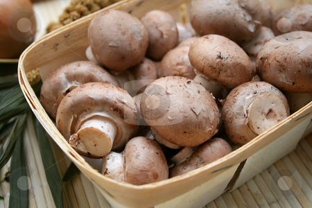 Brown mushrooms stock photo, Brown mushrooms by Yvonne Bogdanski
