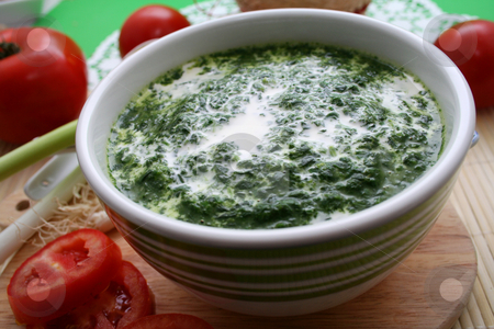 Spinach with cream stock photo, Spinach with cream by Yvonne Bogdanski
