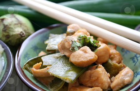 Asian food stock photo, Asian food by Yvonne Bogdanski